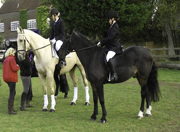 Burley Lodge Equestrian Centre